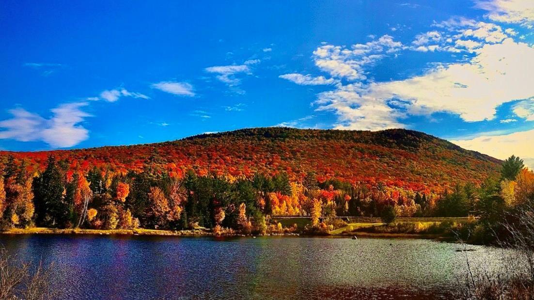 Fall Lakeside