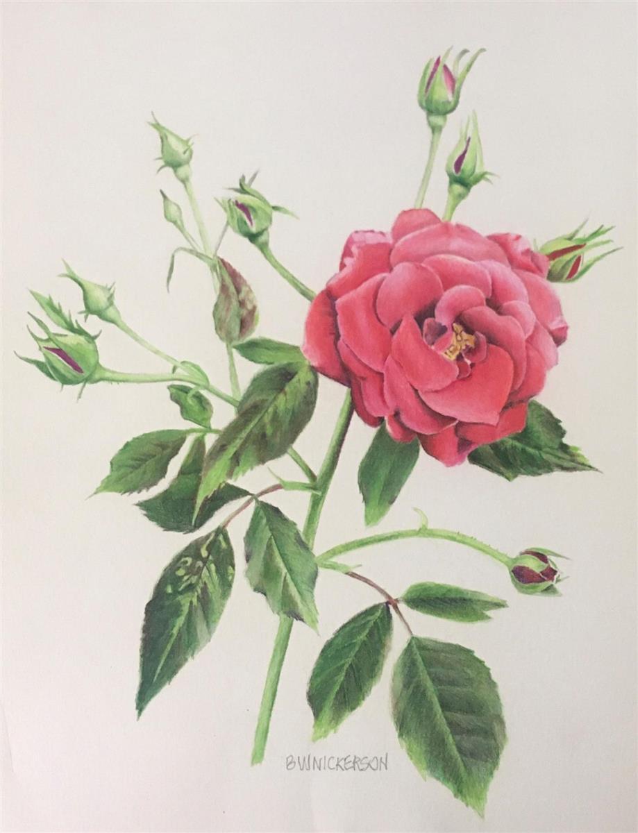 Rosy Future