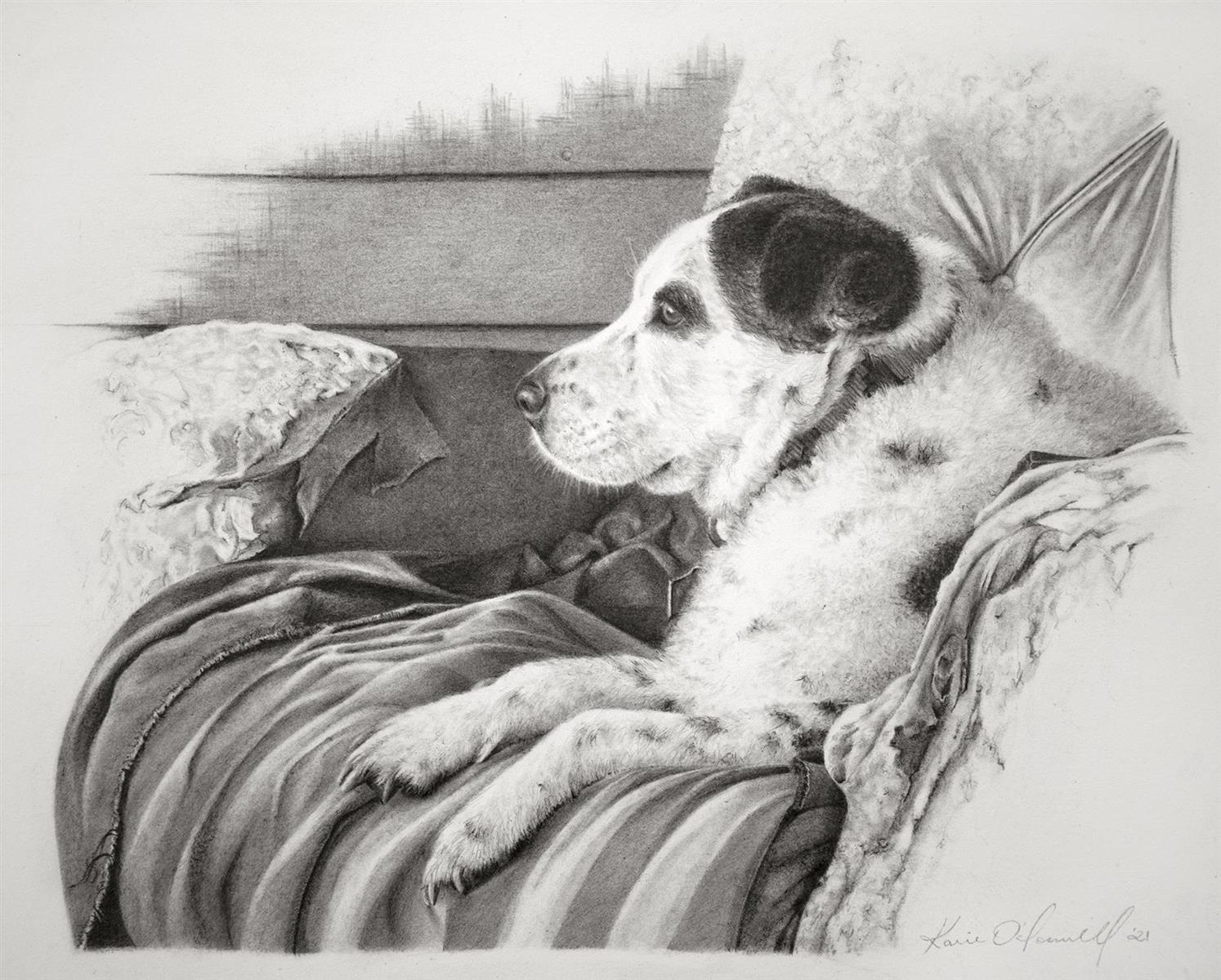 Speckles Portrait