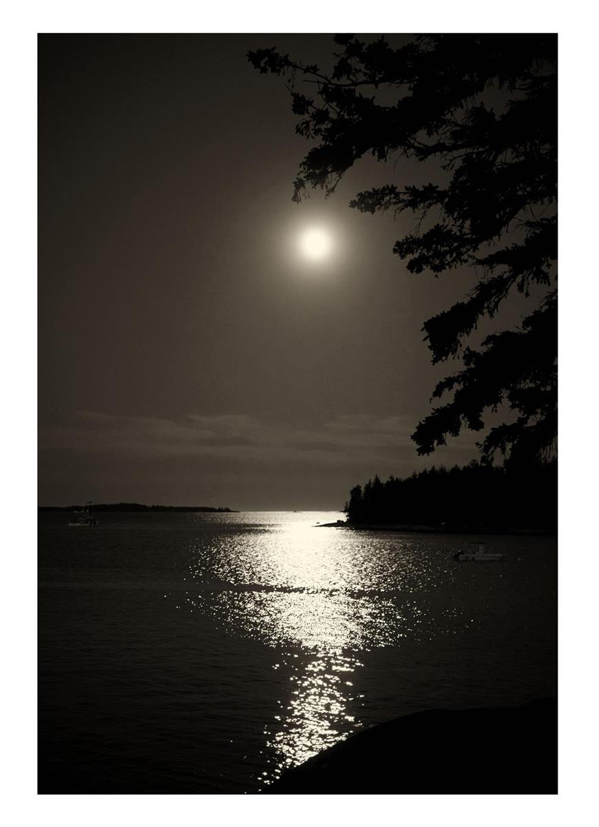 Moonrise over Owls Head